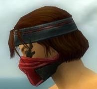 File:Assassin Luxon Armor M dyed head side.jpg