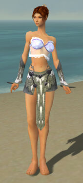 Elementalist Iceforged Armor F gray arms legs front