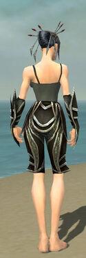 Necromancer Elite Sunspear Armor F gray arms legs back