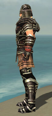 Warrior Ancient Armor M gray side