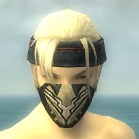 File:Assassin Kurzick Armor M dyed head front.jpg