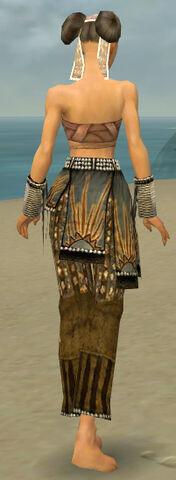 File:Monk Sunspear Armor F gray arms legs back.jpg