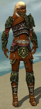 Ranger Elite Luxon Armor M dyed front