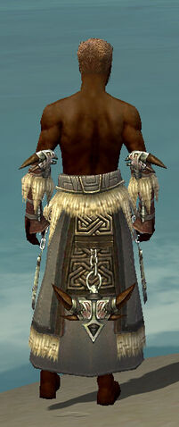 File:Dervish Norn Armor M gray arms legs back.jpg