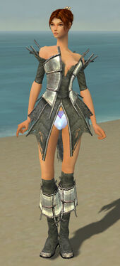Elementalist Primeval Armor F gray chest feet front