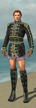 Mesmer Canthan Armor M gray chest feet front