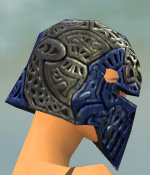 File:Warrior Elite Platemail Armor F dyed head side.jpg