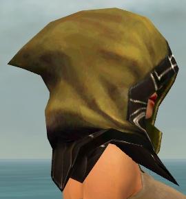 File:Dervish Primeval Armor F dyed head side.jpg