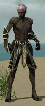 Necromancer Elite Sunspear Armor M gray arms legs front