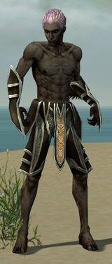 Necromancer Elite Sunspear Armor M gray arms legs front