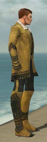 File:Mesmer Krytan Armor M dyed side.jpg