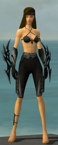 File:Assassin Vabbian Armor F gray arms legs front.jpg