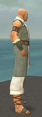 Monk Krytan Armor M gray side