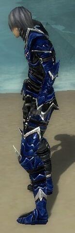 File:Necromancer Elite Profane Armor M dyed side.jpg