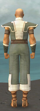 Monk Krytan Armor M gray back