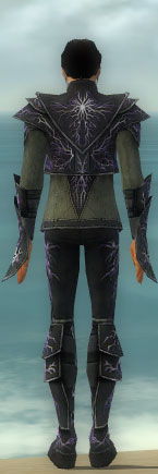 File:Elementalist Ascended Aeromancer's M gray back.jpg