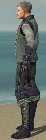 File:Mesmer Elite Elegant Armor M dyed side.jpg