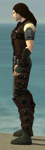 File:Ranger Obsidian Armor M gray side alternate.jpg