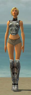 Warrior Istani Armor F gray chest feet front