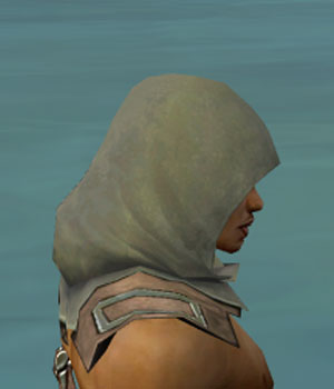 File:Dervish Istani Armor M gray head side.jpg