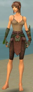Ranger Druid Armor F gray arms legs front