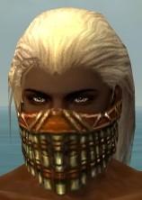 File:Ranger Elite Luxon Armor M dyed head front.jpg