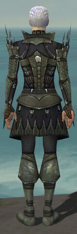 File:Necromancer Cabal Armor M gray back.jpg