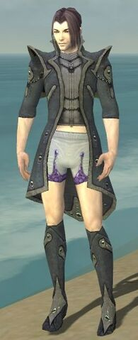 File:Elementalist Tyrian Armor M gray chest feet front.jpg