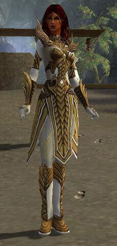 File:Hayda Armor Deldrimor Front.jpg