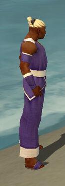 Monk Ascalon Armor M dyed side