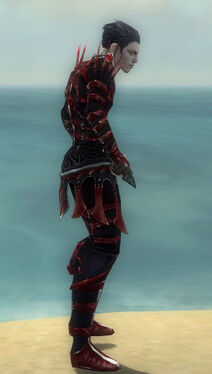 Necromancer Elite Cabal Armor M dyed side
