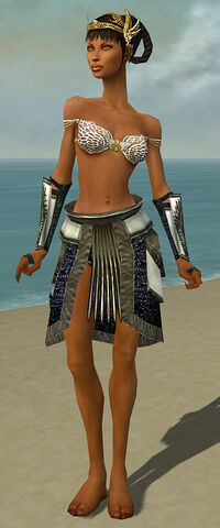 File:Paragon Obsidian Armor F gray arms legs front.jpg