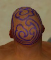 Monk Canthan Armor M dyed head back