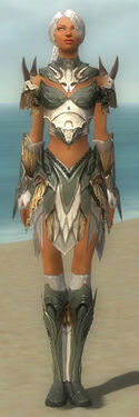 Paragon Norn Armor F gray front