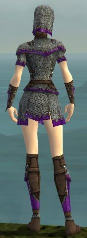 File:Warrior Tyrian Armor F dyed back.jpg