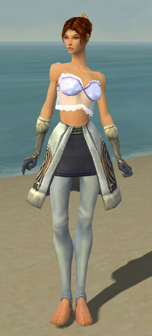 File:Elementalist Norn Armor F gray arms legs front.jpg