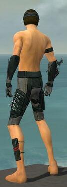 Assassin Seitung Armor M gray arms legs back