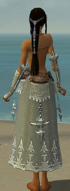 Dervish Vabbian Armor F gray arms legs back