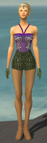 File:Mesmer Canthan Armor F gray arms legs front.jpg