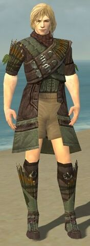 File:Ranger Elite Druid Armor M gray chest feet front.jpg