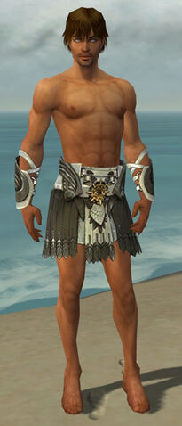 File:Paragon Elite Sunspear Armor M gray arms legs front.jpg