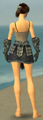 File:Warrior Elite Templar Armor F gray arms legs back.jpg
