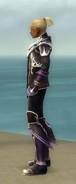Elementalist Deldrimor Armor M dyed side