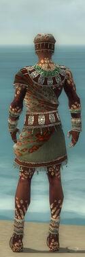 Ritualist Elite Exotic Armor M gray back