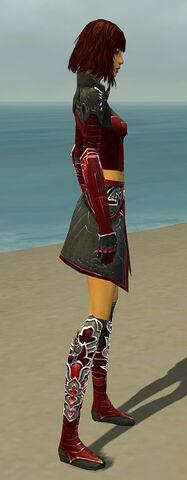 File:Assassin Deldrimor Armor F dyed side.jpg