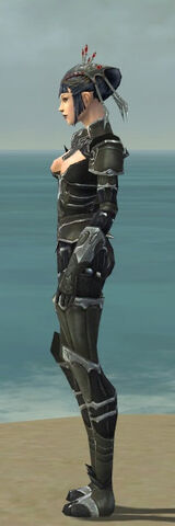 File:Necromancer Tyrian Armor F gray side.jpg