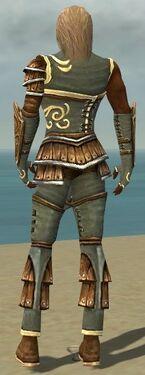 Ranger Shing Jea Armor M gray back