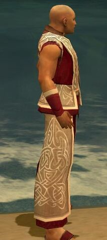 File:Monk Tyrian Armor M dyed side.jpg