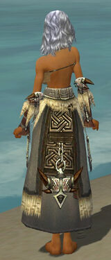 Dervish Norn Armor F gray arms legs back