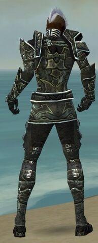 File:Necromancer Fanatic Armor M gray back.jpg